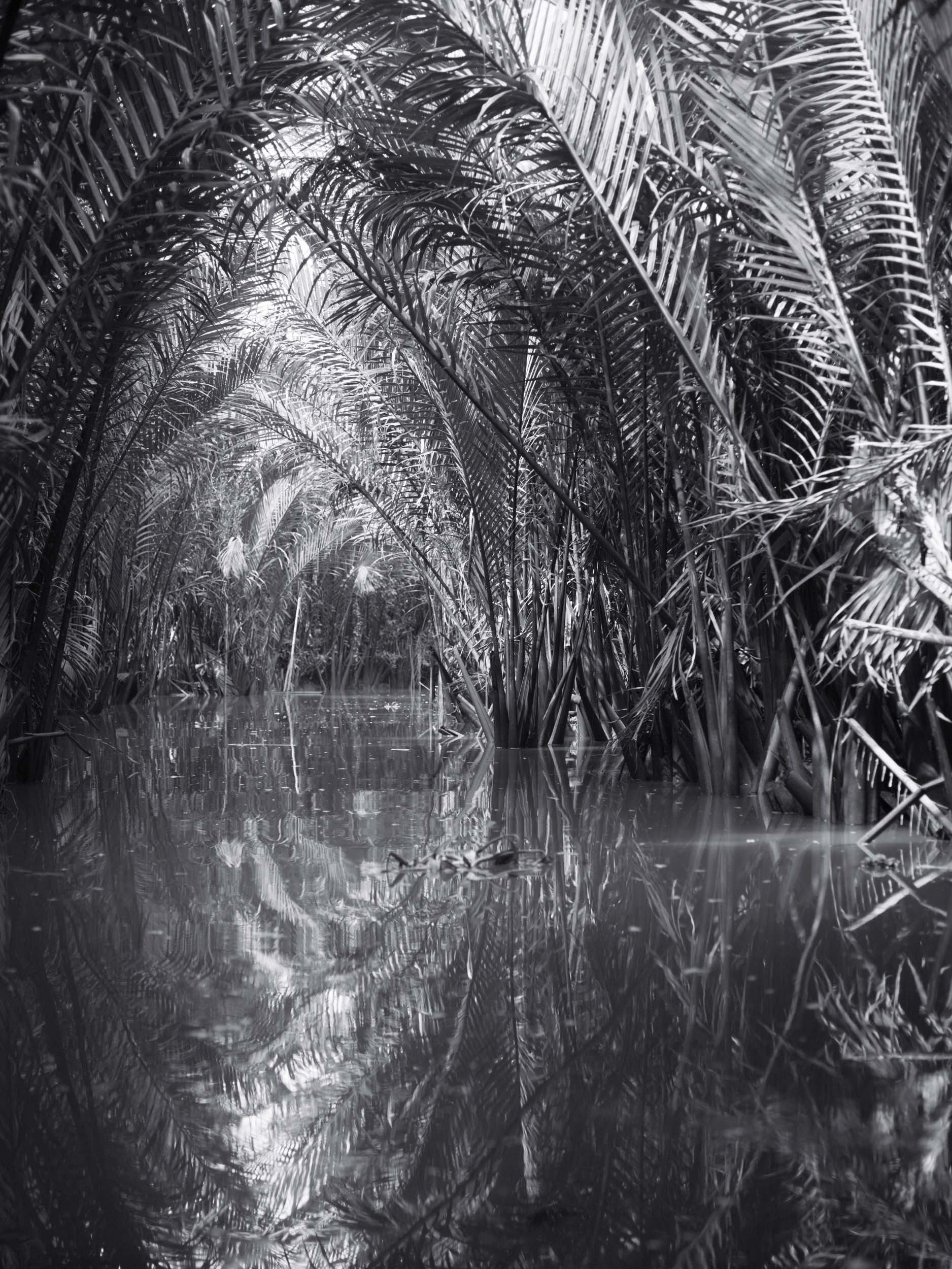 15_Asia_Mekong_Delta_Water_Cocos_182