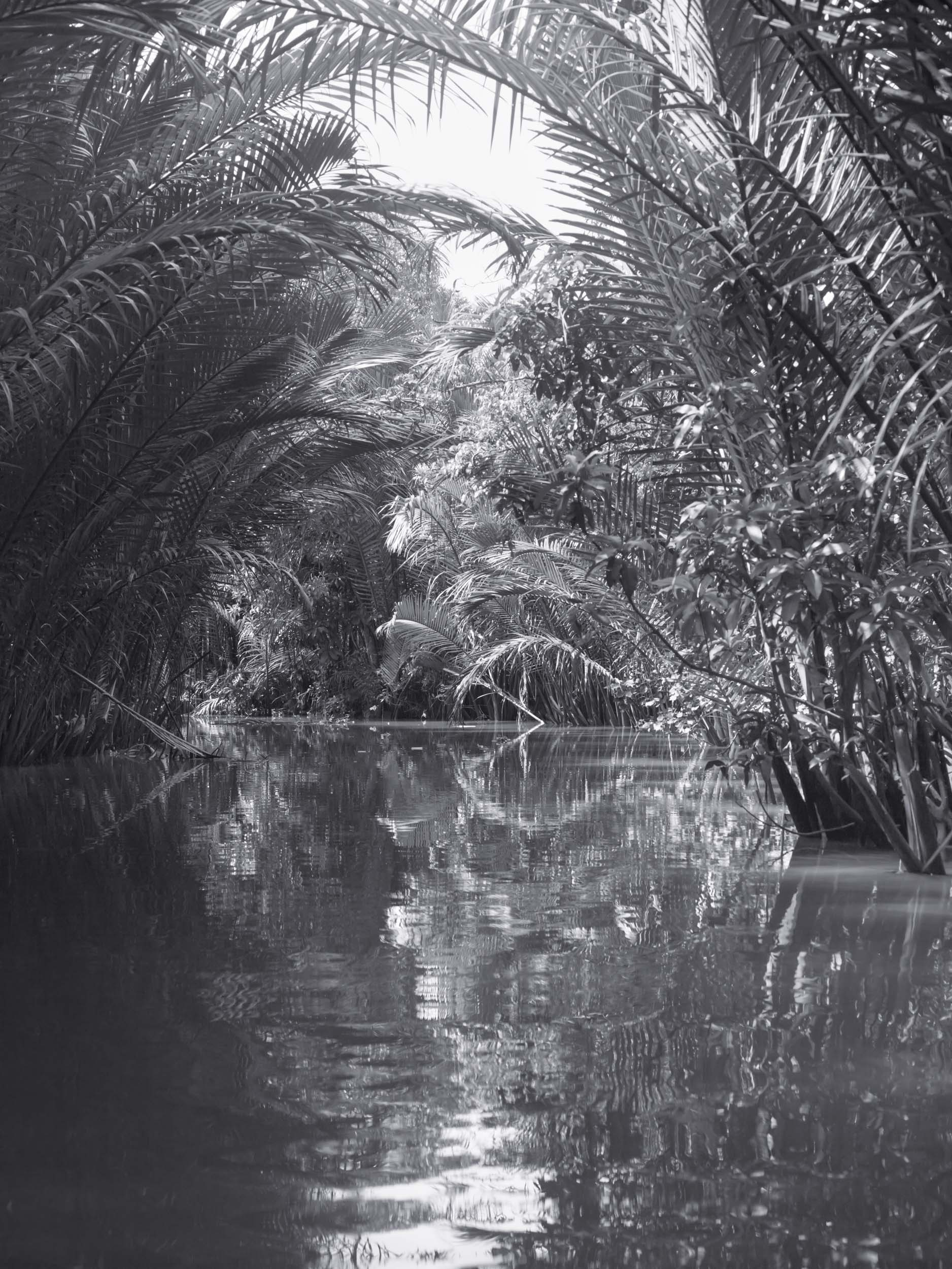 15_Asia_Mekong_Delta_Water_Cocos_322